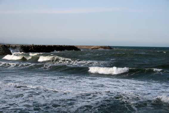 2008-04-0473.JPG
